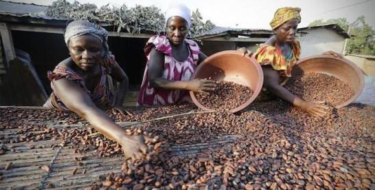 "Enfin du chocolat ""Made in Côte d'Ivoire"""